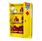 Pharmaceutical Supplies -flammable Storage